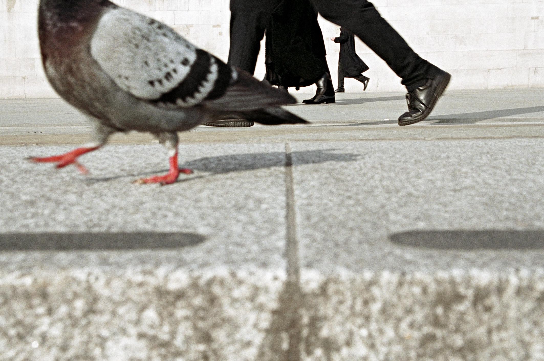 Trafalgar Square (Matt Stuart)